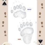 Animal Tracks of the Rocky Mountains Playing Cards