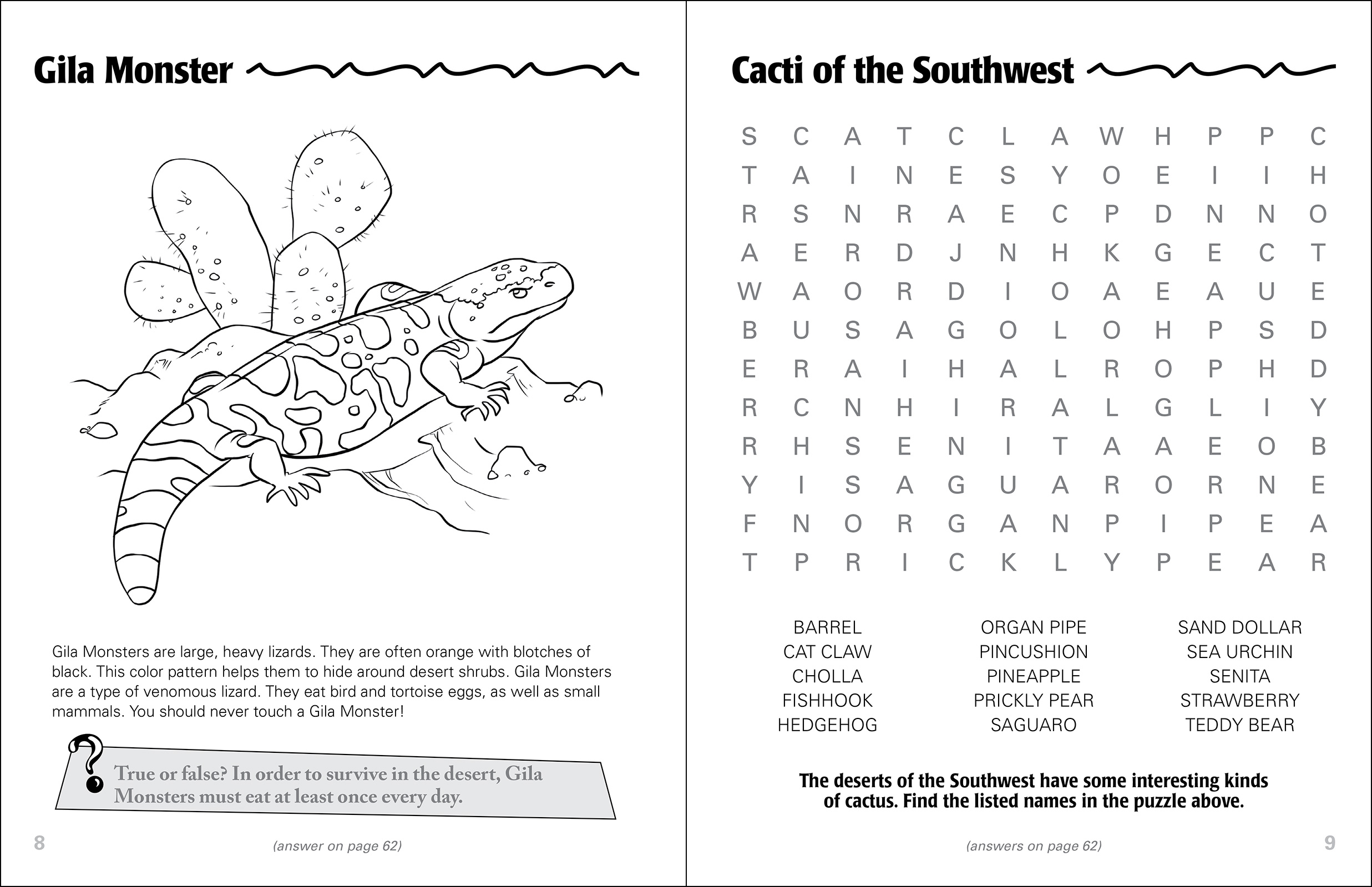 Desert Life of the Southwest Activity Book - adventurepublications.net