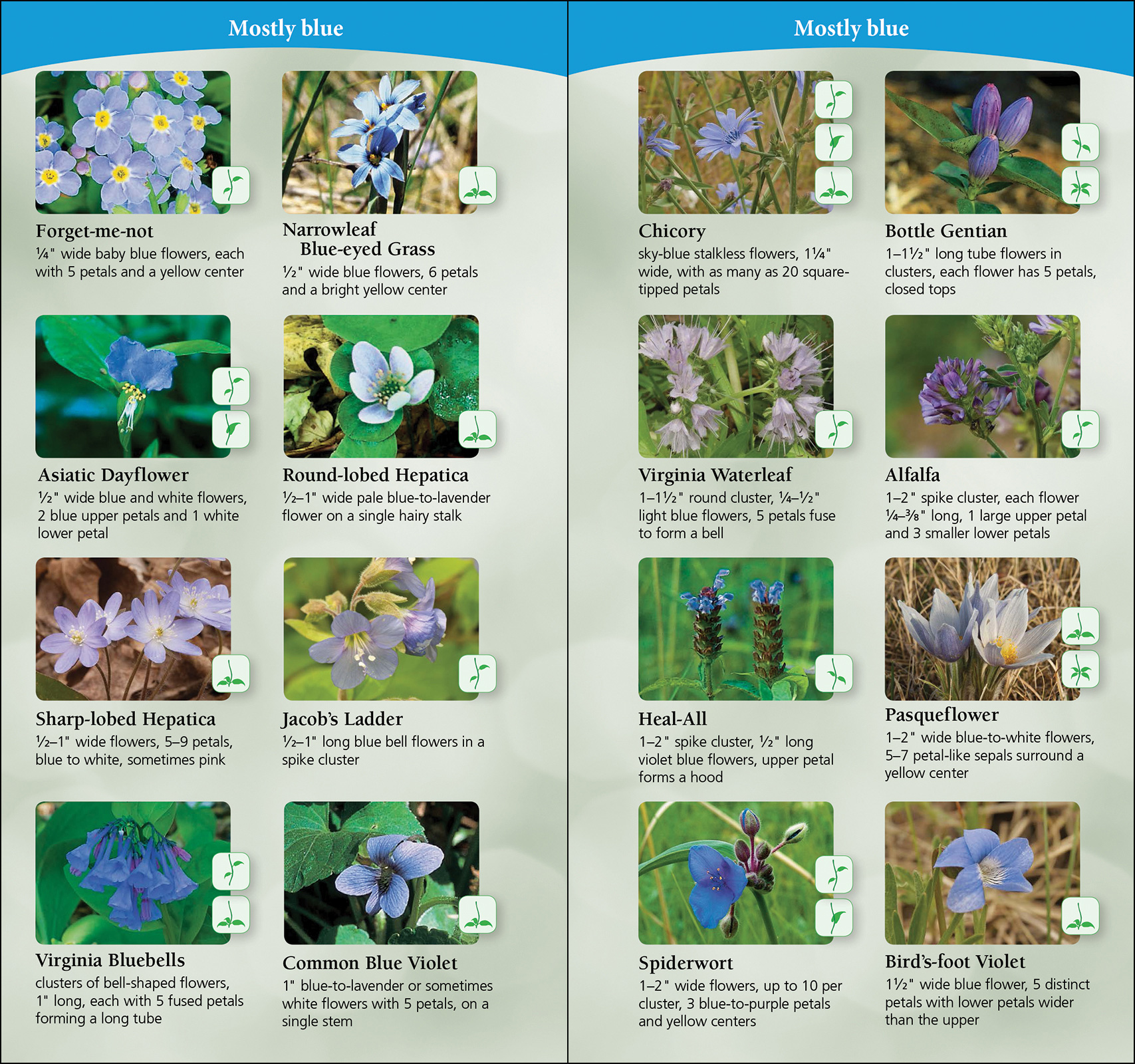 Best Nature Field Guides For Midwest Kansas
