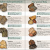 Rocks and Minerals of the Pacific Coast